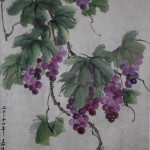 2014-6-22 Grapes