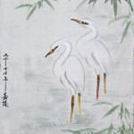 2017-11-19 Heron 蒼鷺