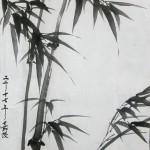 2017-9-10 Bamboo