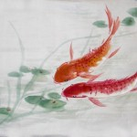 2018-1-14 Carp 鯉魚