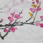2018-1-7 plum blossom (2)