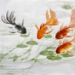 2018-12-16 gold fish