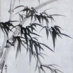 2019-10-28 bamboo (3)