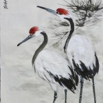 2019-1-27 cranes and pine